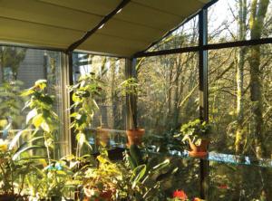 Herb Garden in a Sunroom