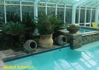 Pool Enclosure and Spa