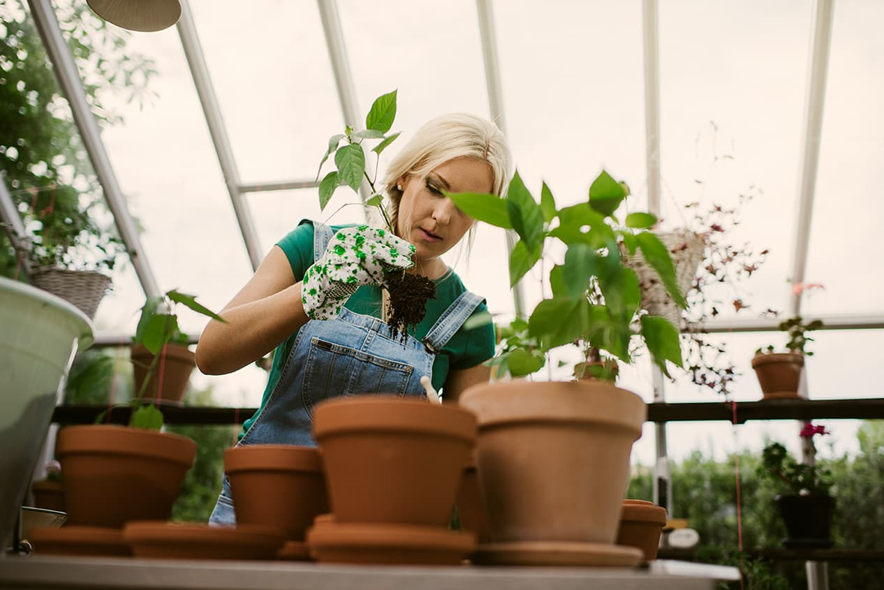 Conservatory Installer in Vancouver WA